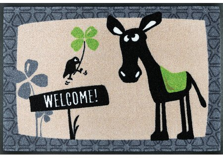 wash-and-dry Matte Esel Balthasar Welcome 050x075 cm